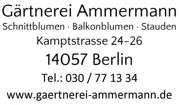 24x41 mm · Stempel gestalten Namensstempel Firmenstempel Stempelvorlagen